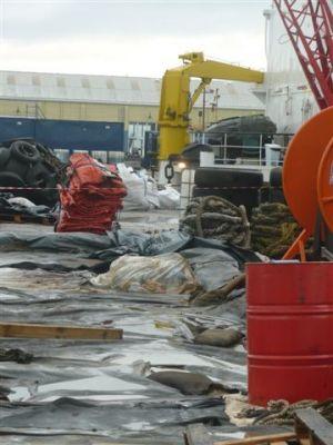 Decontaminating site at the port.